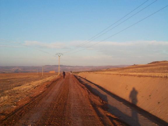 Los Arcos to Logroño Dirt Road